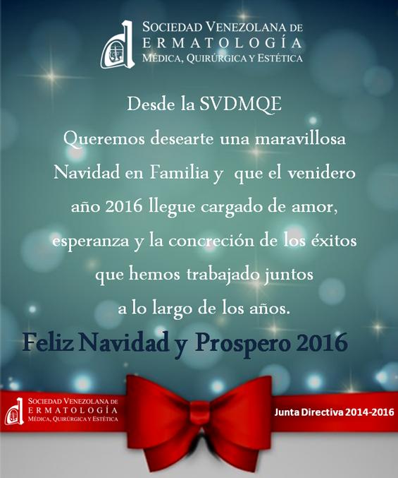 svd-navidad-2015