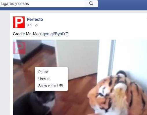 facebook-video-2