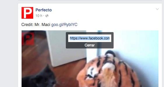 facebook-video-3