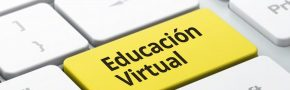 educacion_virtual_piel