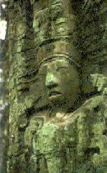 maya2.jpg