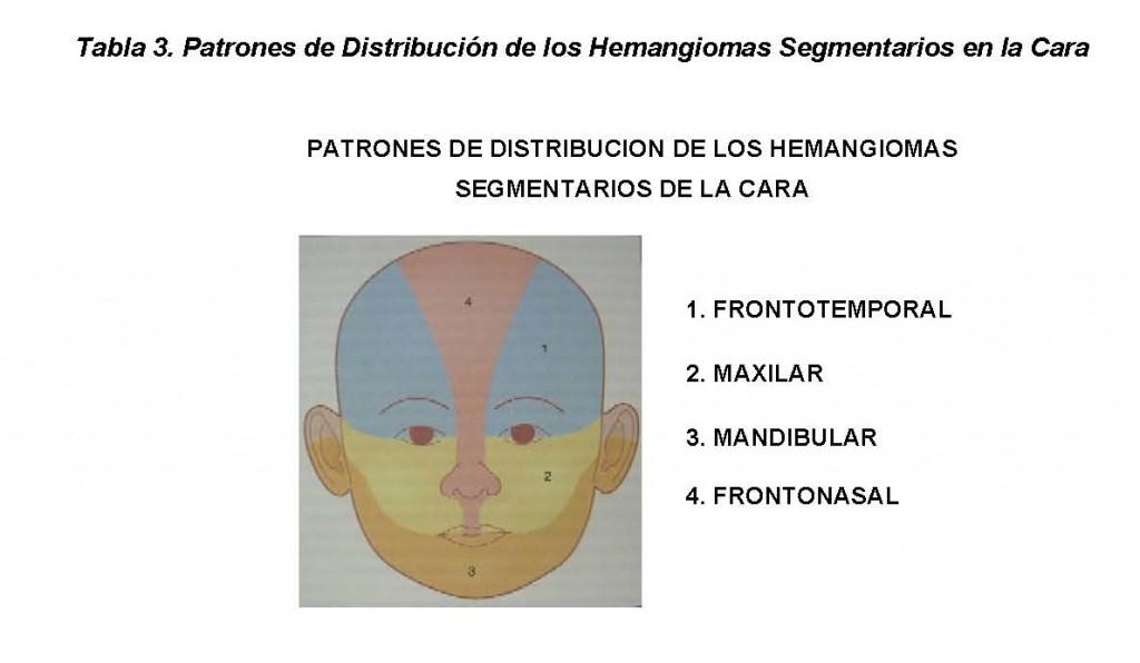 CAPITULO 71: Hemangiomas | PIEL-Latinoamericana / Libreria